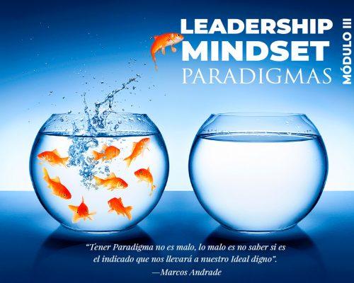 Leadership Mindset Módulo 3
